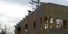 Structural Insulated Panels (SIP Panels)